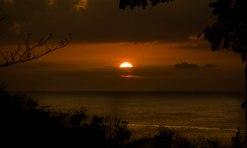 Golden tropical sunset